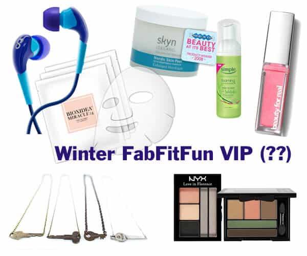 winter fabfitfun vip box spoilers
