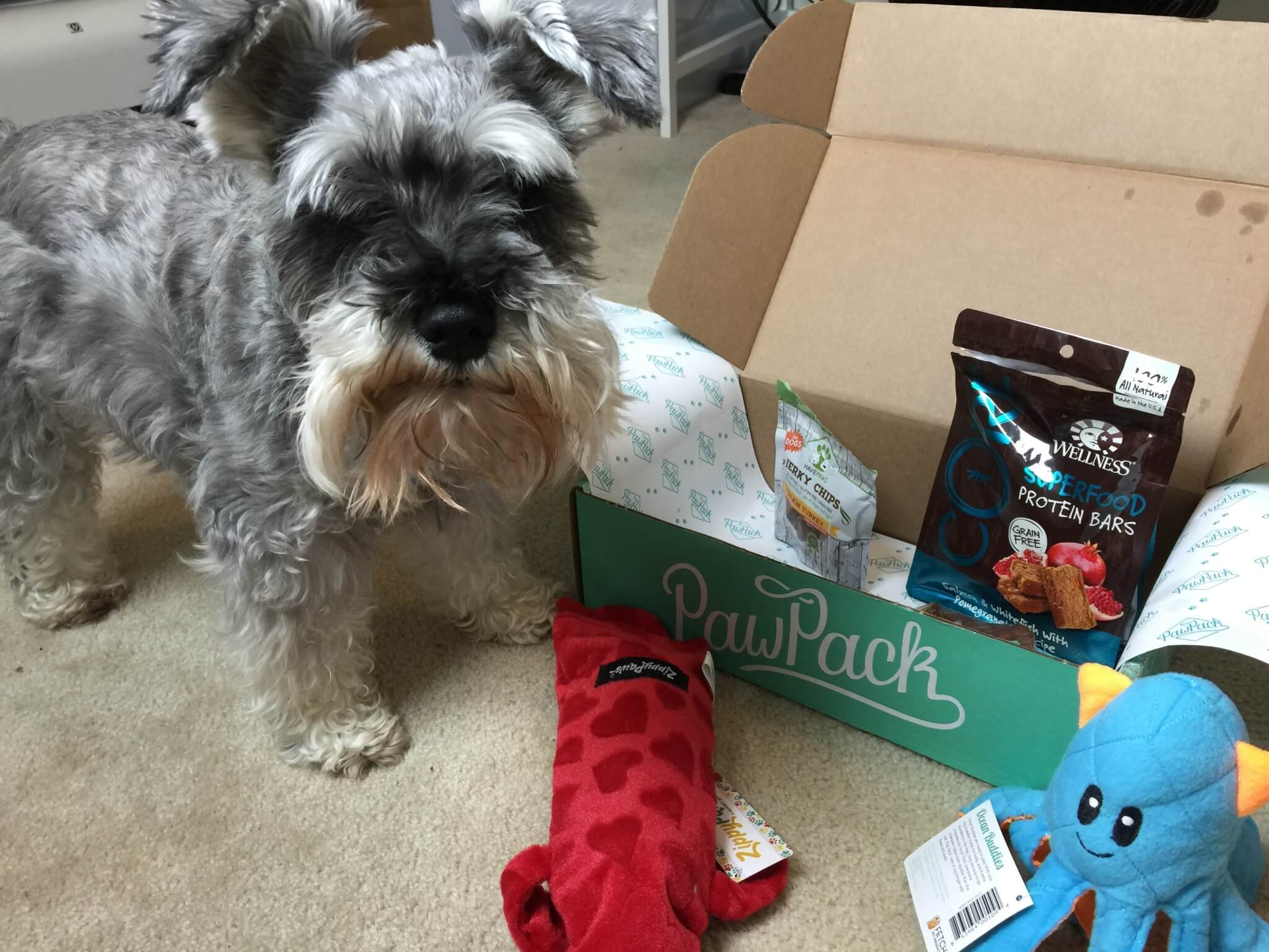 PawPack Dog Subscription Box Review & Coupon - July 2015