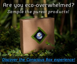 Conscious Box HALF OFF! Today only! [still working 3/6!]