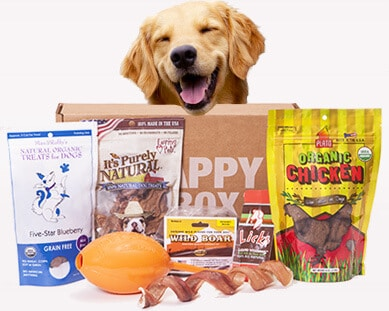 Get Half Off Happy Dog Box! Cyber Monday Deal – No Coupon Needed!