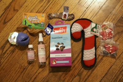 Happy Dog Box Subscription Review + Half Off Coupon