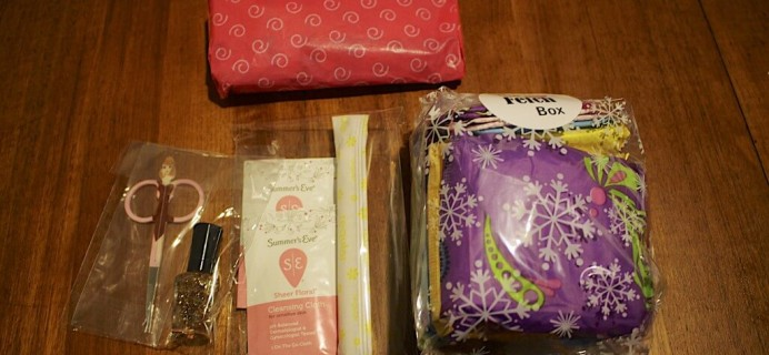 December Fetch Box Review – Teen Period Subscription