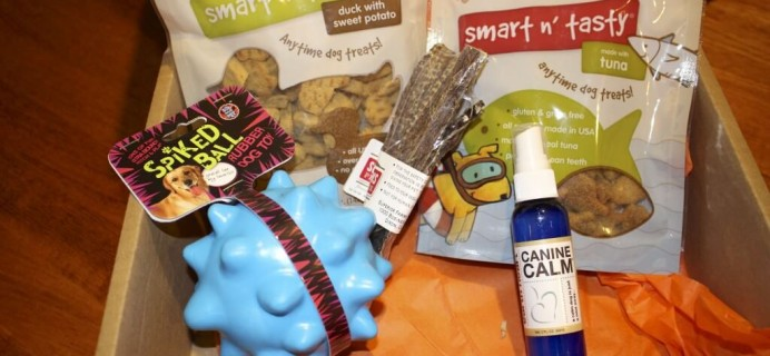 February Bugsy's Box Review + Coupon + Giveaway – Dog Subscription Box