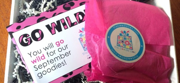 September 2014 The Boodle Box Review -Teen Subscription Box