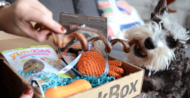 Gilt City Subscription Box Deals: BarkBox, Boxtera, Unbound Box