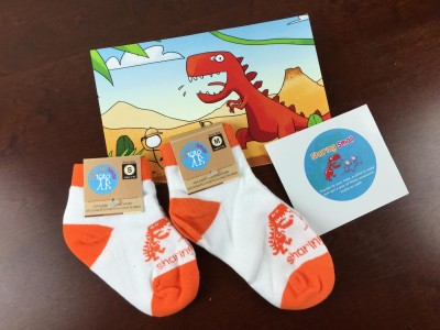 Sharing Small Kids Sock Subscription Review