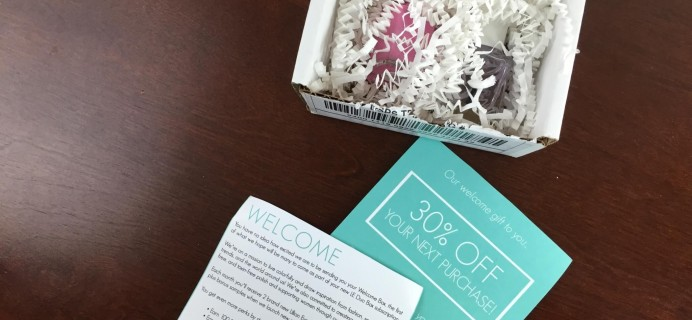 Lillian Eve Nail Polish Subscription Welcome Box Review + Free Welcome Box Coupon