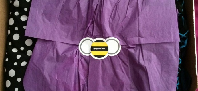 Gwynnie Bee Review + Free Trial Month – July 2015