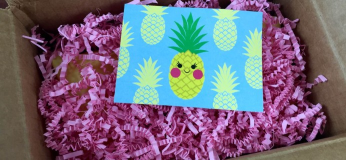 My Craft In A Box Review – July 2015 – Pineapple!
