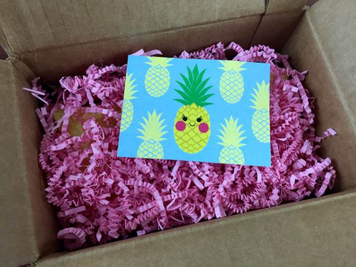 my craft in a box july 2015 unboxing