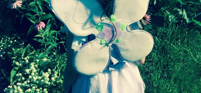 My Pretend Place Fairy Dress-Up Box Month 3  September 2015 & Coupon