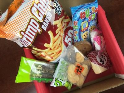 Japan Yum November 2015 Subscription Box Review + Coupons