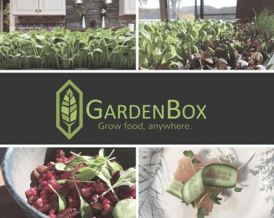 GardenBox Cyber Monday Deal: 15% Off Coupon – DIY Microgreens!