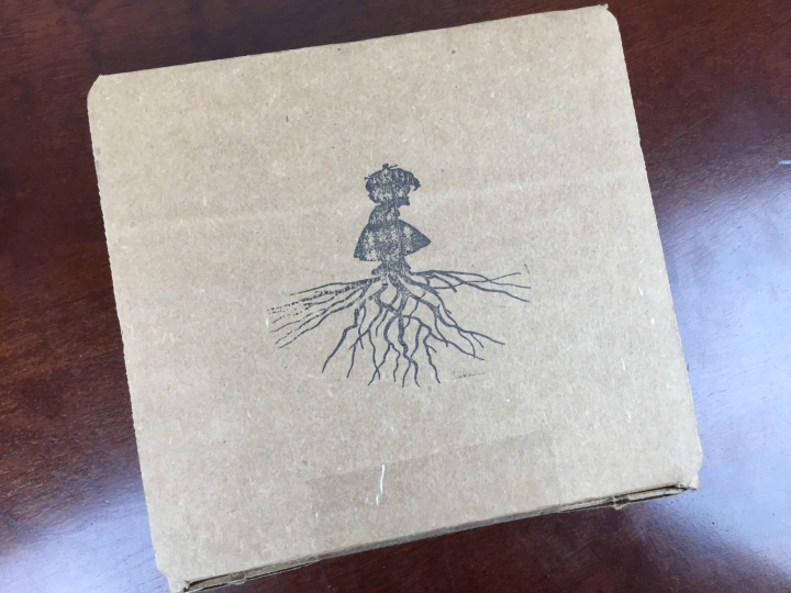 our little roots december 2015 box