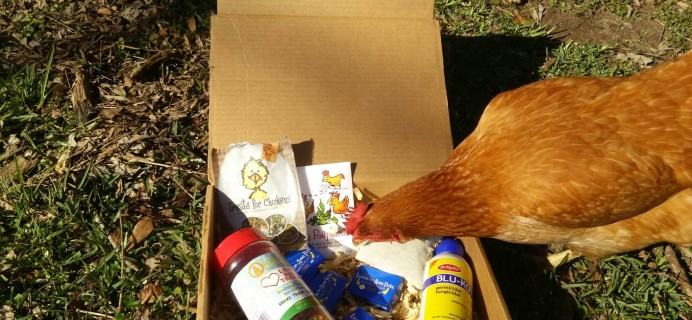 Henny & Roo Subscription Box Review & Coupon – January 2016