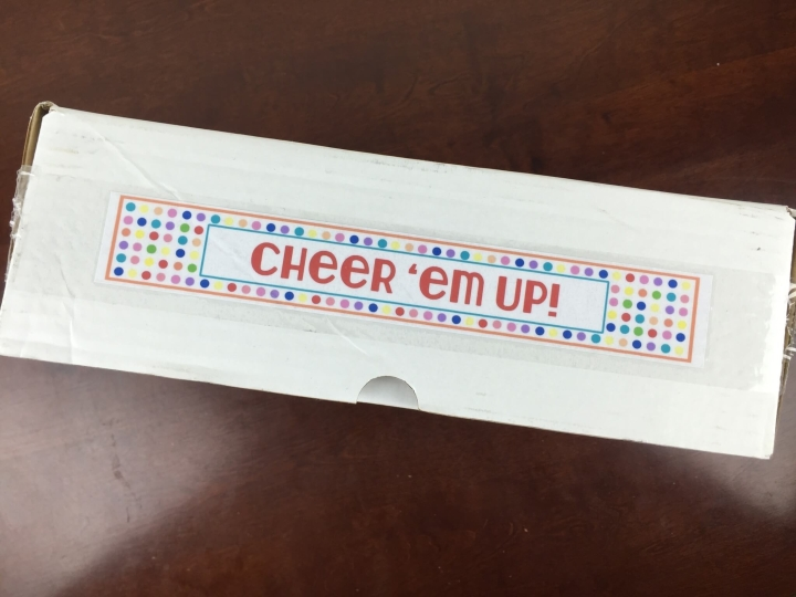 cheer em up box february 2016 box