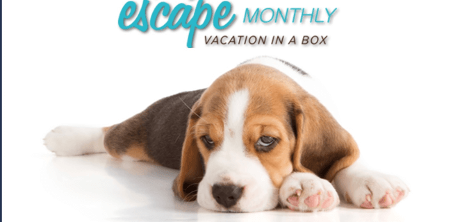 Escape Monthly Has Closed