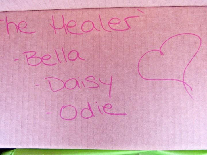 The Healer Box