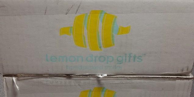 Lemon Drop Box April 2016 Subscription Box Review & Coupon