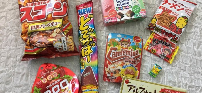 Taste Japan May 2016 Subscription Box Review