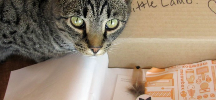 May 2016 Meowbox Subscription Box Review & Coupon