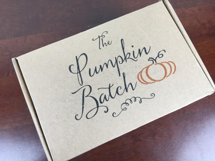 The Pumpkin Batch Box June 2016 box
