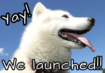 New Dog Subscription Box: DogPeopleBox + Spoiler + Coupon!