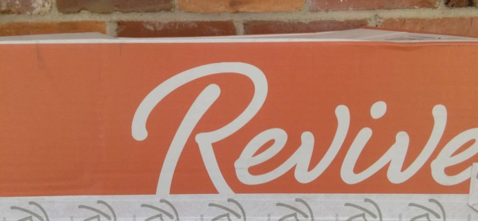 Revive Clothing Depot Subscription Box Review – July 2016
