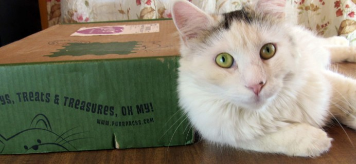 Purr-Packs August 2016 Subscription Review & Coupon – Fun and Love Size