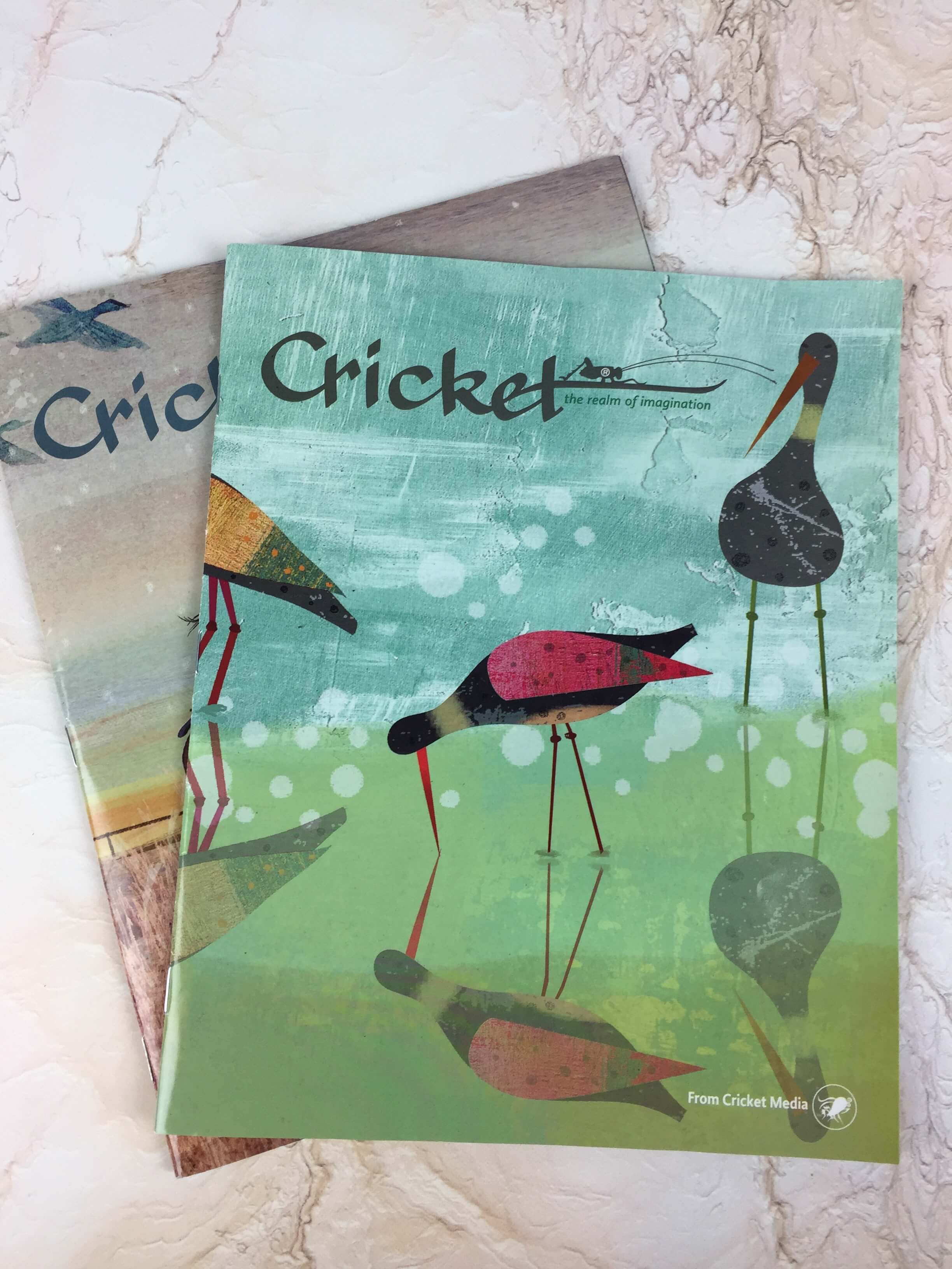 Watercolor artist magazine subscription - Cricket Magazine Subscription Review