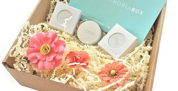 Esthoria Box Beauty Cyber Monday Coupons: Free Box + RMS Beauty Wipes Deals
