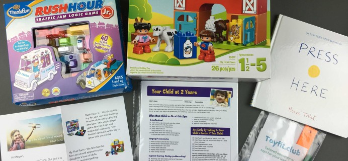 Toyfit November 2016 Subscription Box Review