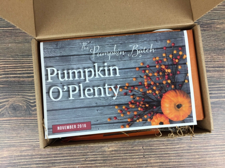 the-pumpkin-batch-november-2016-unboxing