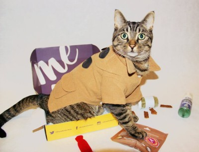 WhiskerBox Cyber Monday Cat Subscription Box Deal -10% Off For Life Discount!