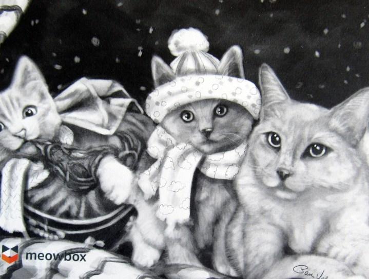 meowboxnovember1607