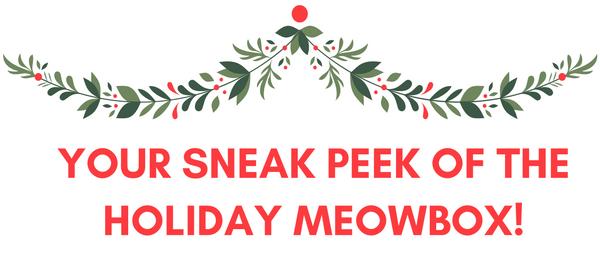 Meowbox December 2016 Spoiler + Coupon!