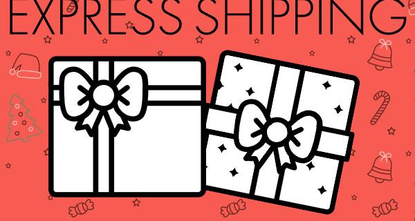 Treatsie Coupon: FREE Express Holiday Shipping!