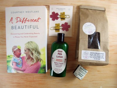 Joyful Devotion February 2017 Subscription Box Review + Coupon
