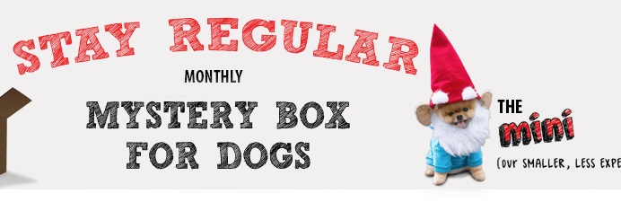 Mini Monthly Mystery Box For Dogs Available Now + FREE Bonus Item Deal!