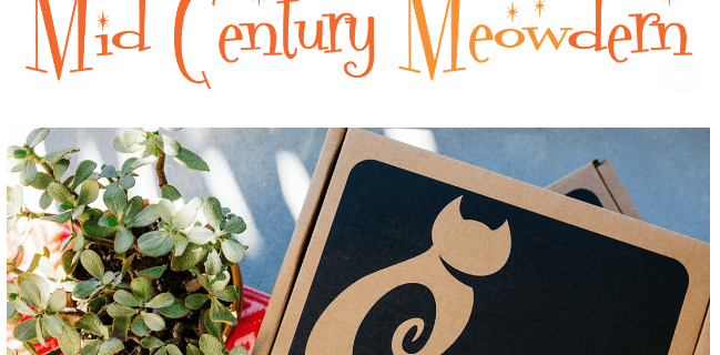 Cat Lady Box April 2017 Theme Spoiler & Coupon!