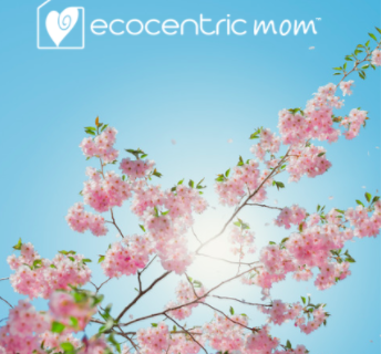 Ecocentric Mom Box November 2017 Spoilers + 30% Off Coupon!