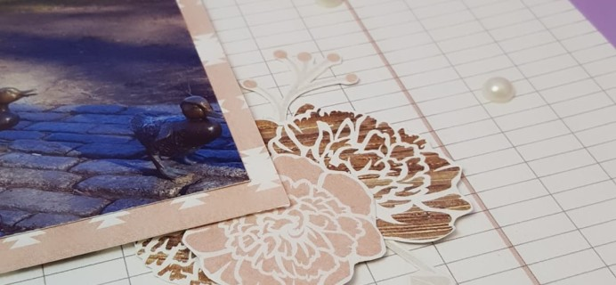 Scrapbooking Store Cyber Monday Deal: 20% Off Subscriptions!