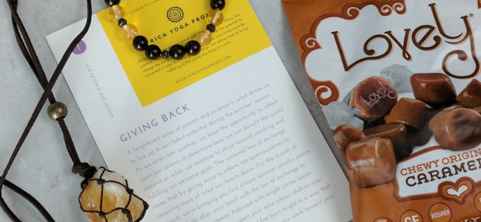 Yogi Surprise Jewelry Box Subscription Review – August 2017