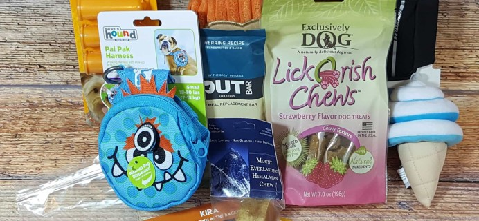 Pet Treater Dog Subscription Box Review + Coupon – July 2017