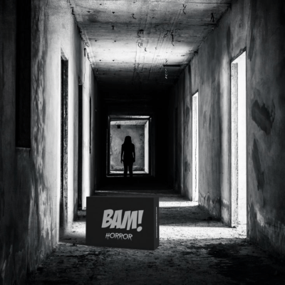 The BAM! Horror Box Coupon: Save $3 On First Box!