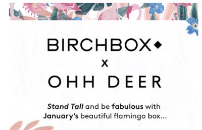 Birchbox UK January 2018: Ohh Deer Collab!