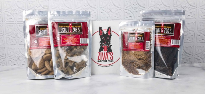 Ziva's Surprise Pack February 2018 Review