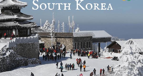 Takeout Kit South Korean Kits Now Available + Coupon!