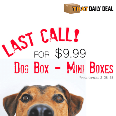 Pet Treater Mini Dog Box Price Increase – Lock In Price NOW!