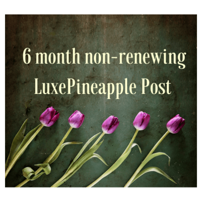 LuxePineapple Post Mother's Day Deal: Get Prepaid 6 Month Subscription For Only $100!